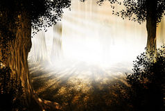 Povos da floresta Foto de Stock Royalty Free