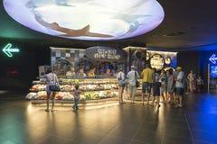 Povos de Antalya, Turquia 1º de setembro de 2014 no Imagens de Stock Royalty Free