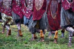 Povos de Dani durante o festival do tribo no wamena foto de stock