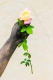 Povos de jardinagem das mãos escuras com rosas Imagem de Stock