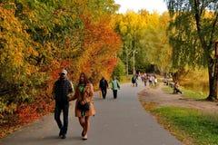 Povos de passeio no parque do outono Fotos de Stock