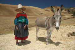 Povos de Peru Foto de Stock Royalty Free