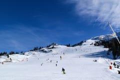 Povos do esqui Imagens de Stock Royalty Free