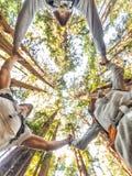 Povos do grupo dos amigos da floresta da natureza que guardam as mãos fotos de stock royalty free
