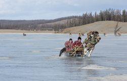 Povos do Mongolian que montam um pequeno trenó em um lago congelado Khuvsgul Fotos de Stock