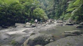 Povos do turista do grupo que andam nas rochas do rio da montanha que fluem nos povos da opinião do zangão da floresta úmida que  vídeos de arquivo