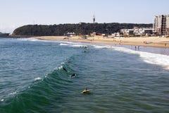 Povos e surfistas na praia da ervilhaca em Durban Fotografia de Stock