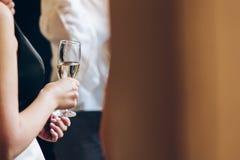Povos elegantes que guardam vidros do champanhe no casamento luxuoso com referência a Fotos de Stock Royalty Free
