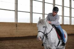 Povos em um treinamento do cavalo em uma arena de madeira imagem de stock royalty free
