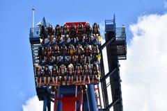 Povos engraçados que vêm para baixo da parte superior do céu no roller coaster de Sheikra em jardins Tampa B de Bush fotografia de stock