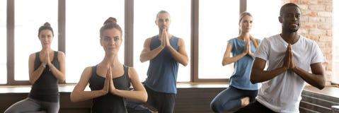 Povos horizontais da imagem durante a posição da sessão da ioga na pose da árvore fotos de stock royalty free