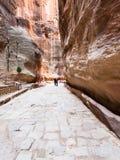 Povos na estrada pavimentada no desfiladeiro de Al Siq à cidade de PETRA Fotos de Stock