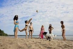 Povos na praia que joga o voleibol imagem de stock royalty free