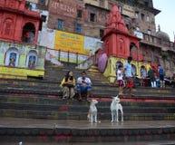 Povos no Ahilyabai Ghat em Varanasi, Índia Imagens de Stock Royalty Free