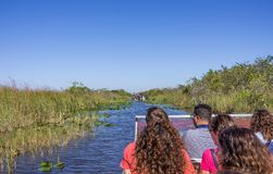 Povos no airboat nos marismas, Florida Foto de Stock