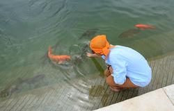 Povos no templo dourado em Amritsar, Índia Foto de Stock Royalty Free