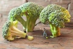 Povos pequenos que cortam brócolis O conceito do cozimento Imagens de Stock