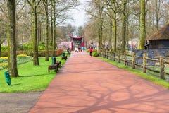 Povos que andam e que fazem fotos no jardim Keukenhof da mola, Lisse, Países Baixos imagens de stock
