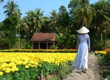 Povos que andam na estrada rural no delta de Mekong, Vietname do sul Imagem de Stock