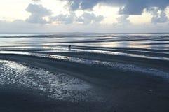 Povos que andam na praia Imagem de Stock