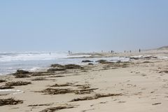 Povos que andam na praia na distância Foto de Stock