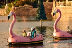 Povos que apreciam barcos de pá da cisne no por do sol na área internacional da movimentação foto de stock