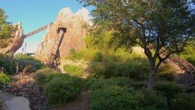 Povos que apreciam a legenda de Everest da expedição do roller coaster proibido da montanha no reino animal em Walt Disney World video estoque