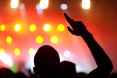 Povos que apreciam o concerto Fotografia de Stock