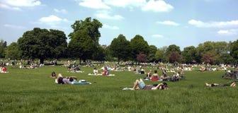 Povos que colocam na grama no parque Fotografia de Stock Royalty Free