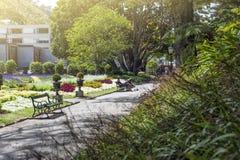 Povos que descansam em Wellington Botanic Garden, o parque público o maior na cidade imagens de stock royalty free