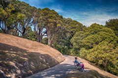 Povos que descansam em Wellington Botanic Garden, o parque público o maior na cidade Foto de Stock Royalty Free