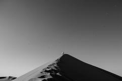 Povos que escalam Big Daddy Dune, olhando a cimeira e os pássaros fotos de stock royalty free