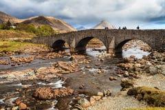 Povos que estão em uma ponte sobre um rio Fotografia de Stock