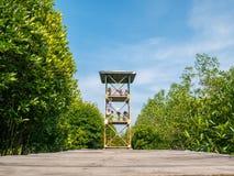 Povos que estão na torre que olha manguezais de cima nos manguezais Forest Conservation Lubuk Kertang fotografia de stock