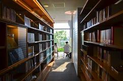 Povos que estudam na biblioteca Imagem de Stock Royalty Free