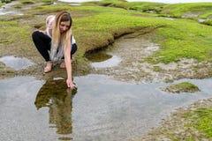 Povos que exploram a zona intertidal de Vancôver, Ingleses Colum imagem de stock royalty free