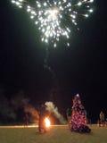 Povos que olham fogos-de-artifício na praia de Candolim Imagens de Stock