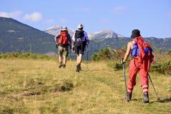 Povos que trekking na montanha Foto de Stock Royalty Free