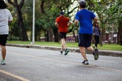 Povos saudáveis do estilo de vida que correm na aptidão e na saudável Fotografia de Stock