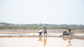 Povos tailandeses que mantêm o sal do cultivo de sal vídeos de arquivo
