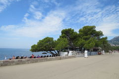 Povos tomando sol e de passeio na costa adriático Fotografia de Stock Royalty Free