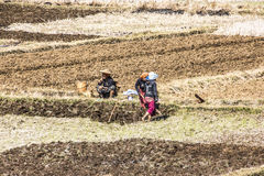 Povos tribais nos campos Imagem de Stock