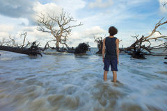Powódź przypływ Obraz Royalty Free