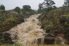 powódź układ Fotografia Royalty Free