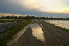 powódź Fotografia Royalty Free