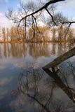 powódź, wiosna Zdjęcia Royalty Free