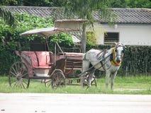 powóz. Zdjęcie Stock