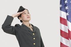 Poważny kobiety USA oficer wojskowy salutuje flaga amerykańską nad szarym tłem Fotografia Royalty Free