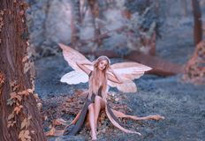 Powabna czarodziejka budził się w lesie, sweetly chlasta po spać, wskazówki dziewczyna z blondynem, oczy zamykający w długiej zie zdjęcie stock