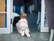 Powabna dziewczyna na wszystkie fours opuszcza pokój obraz stock